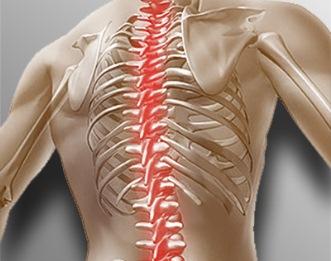 Почему болит спина после тренировок основные причины