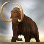Болезни суставов погубили мамонтов
