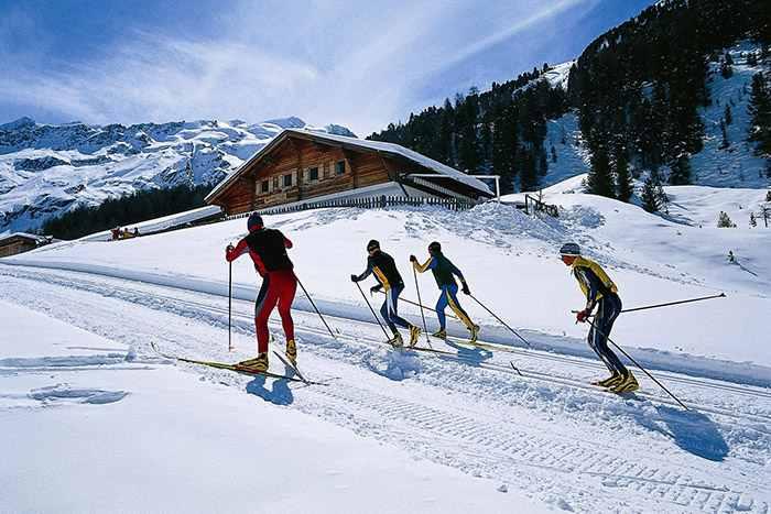 лыжники на дороге