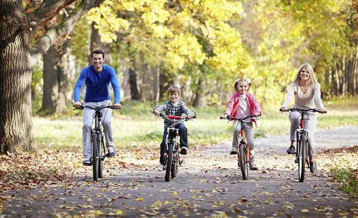 семья катается на велосипедах в парке
