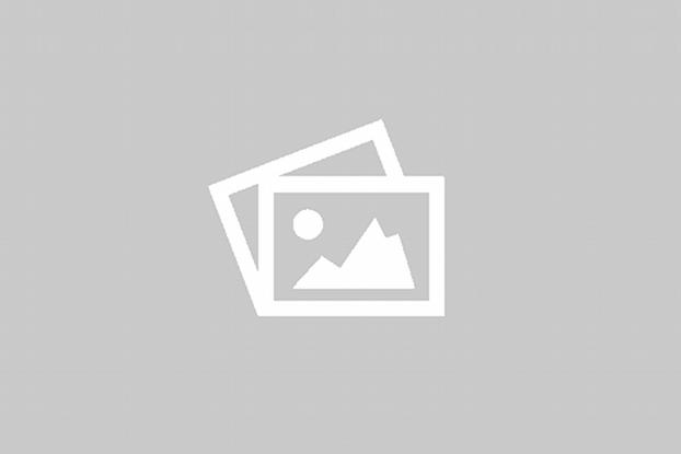 Виды сколиоза - типы, формы и классификация сколиоза